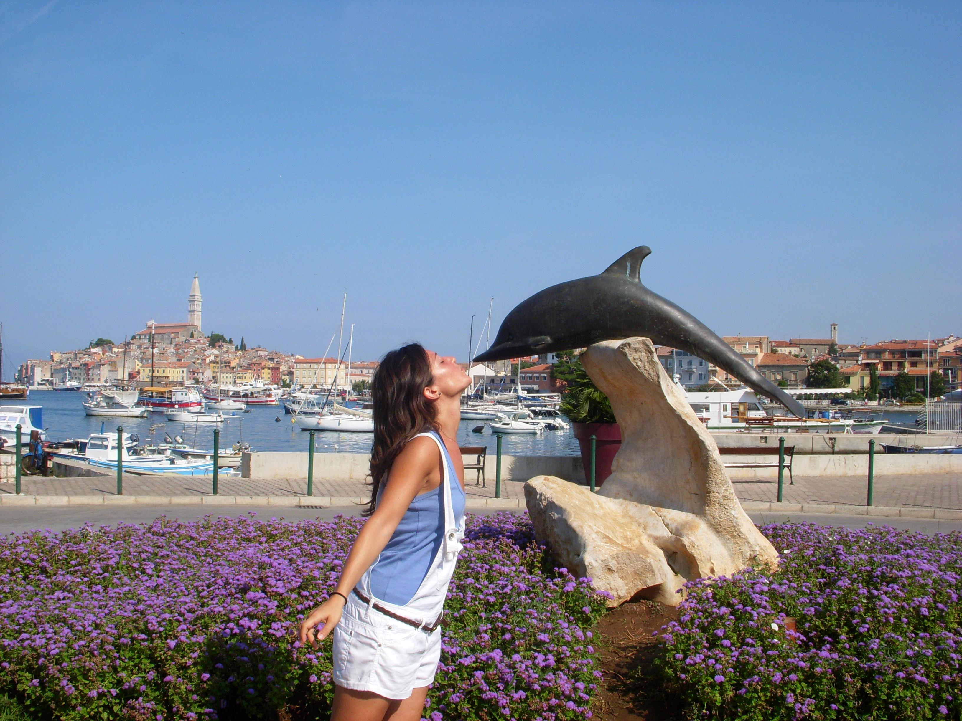 Delfino di Rovigno