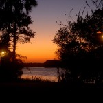 Crociera sul fiume Zambezi al tramonto